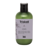 TRISKELL botanical treatment Garbanotiems plaukams šampūnas, 300ml